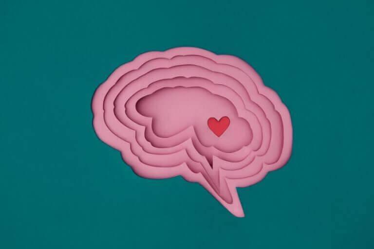 sydän aivoissa