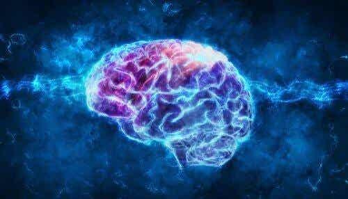 Psykofysiologia: mitä se on?