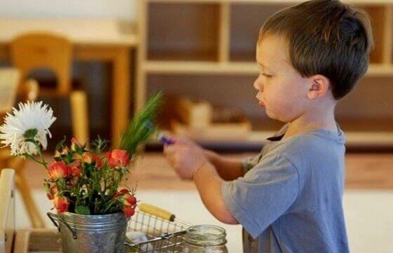 lapsi ja kasvi