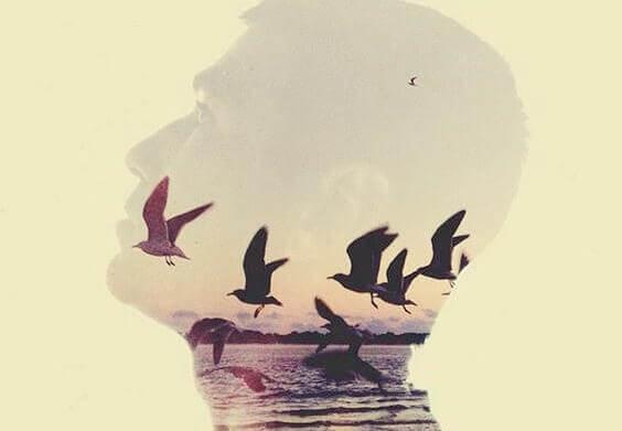 miehen päässä lentää lintuja