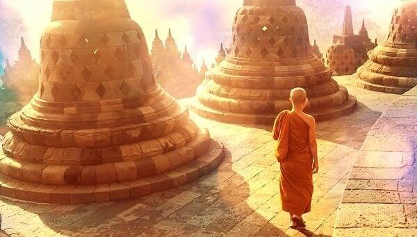 munkki kävelee