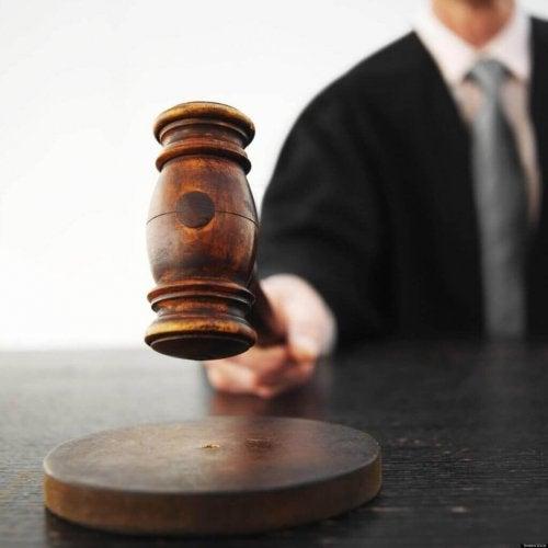 Attribuution peruserhe: tuomari