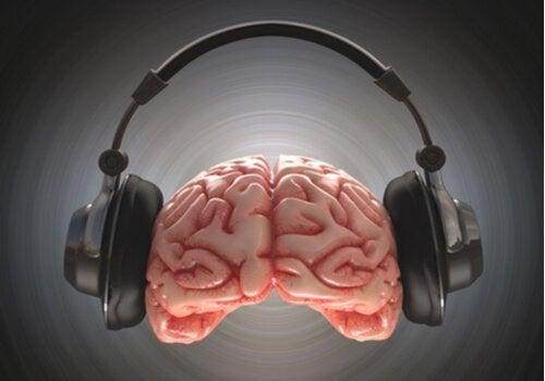 elokuvien ääniraidat vaikuttavat aivoihin