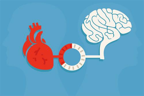 sydämen johdonmukaisuus: sydän ja aivot