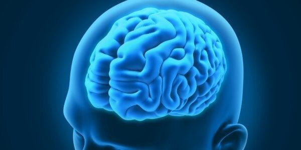 Kolme mielenkiintoista neurologista häiriötä