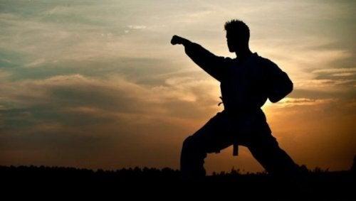 Taistelulajit: mies harjoittelee
