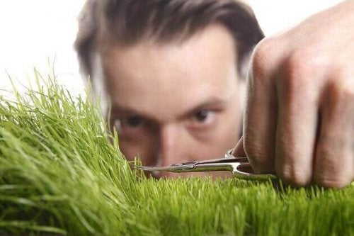 Pakko-oireinen persoonallisuushäiriö: mies trimmaa ruohoa