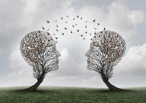 Mitä on sosiaalinen kognitio?