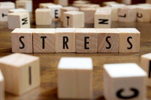 stressipalikat