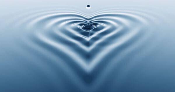 sydämen johdonmukaisuus: sydämen muoto veden pinnalla
