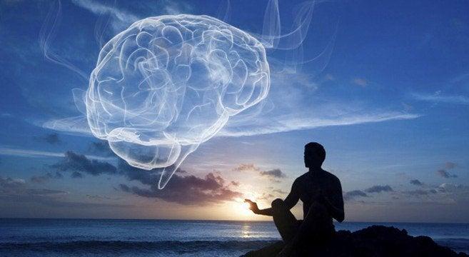 tauot ovat tärkeitä aivoille
