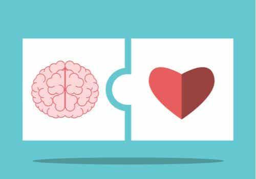 Saloveyn ja Mayerin teoria tunneälystä