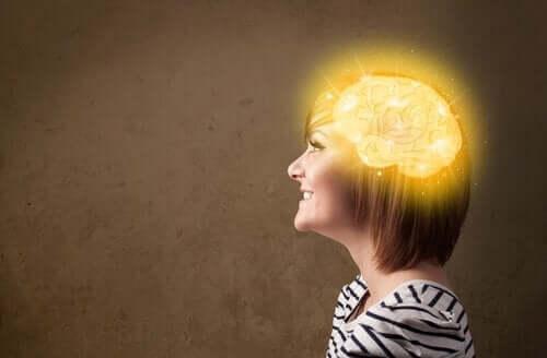 aivot ja onnellisuusalue