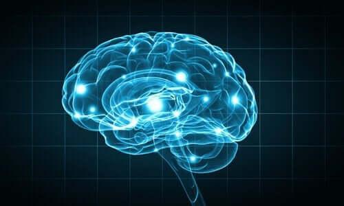 aivojen pisteet