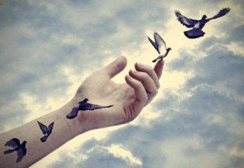 linnut lentävät pois kädestä
