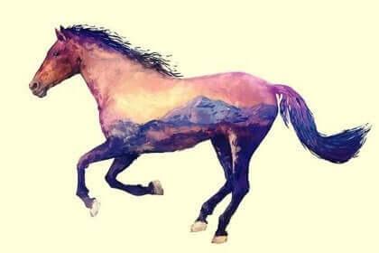 Eksynyt hevonen, kiinalainen faabeli