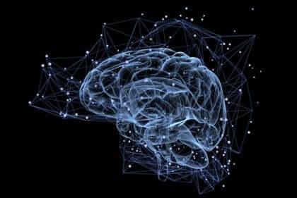 Human Connectome Project antaa tietoa neuronien välisistä yhteyksistä