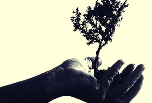 Myötätuntoinen empatia keskittyy ymmärtämisen ja tuntemisen lisäksi toimimaan toisen auttamiseksi