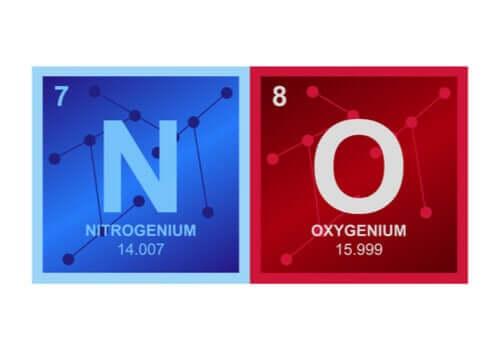 Typpioksidi on rasvaliukoinen molekyyli ja sen tehtävä hermostossa on toimia välittäjäaineena