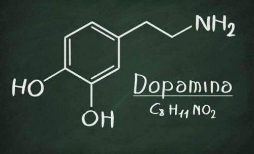 Lukuisat tieteelliset kokeet ovat osoittaneet, että riippuvuutta aiheuttaa elimistön dopamiinin tarve