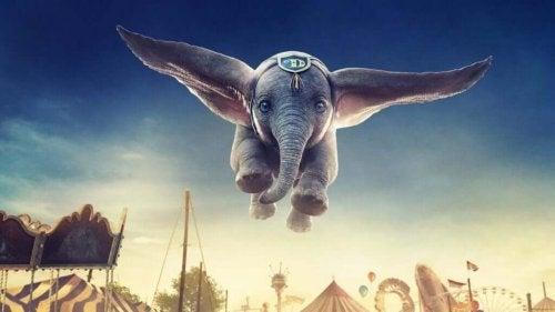 Dumbo: päivitys menneestä