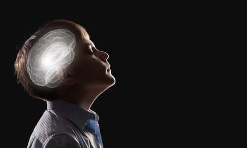 Intuition neurobiologian mukaan intuitiolla on neurologinen perusta