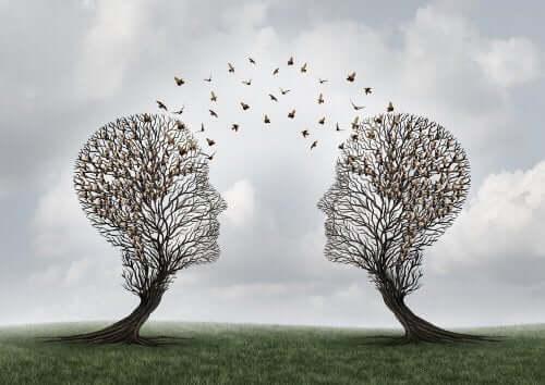 Pään muotoiset puut