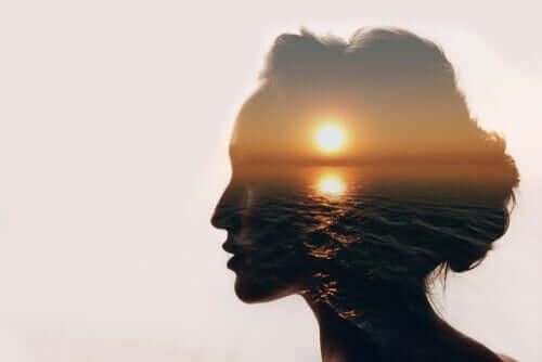 Mielen ja meditaation suhde on tiivis