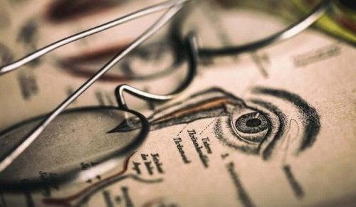 Optografia on 1800-luvulla kehitetty tieteenala, jonka päämääränä oli ikuistaa viimeinen kuolleen verkkokalvolle piirtynyt kuva