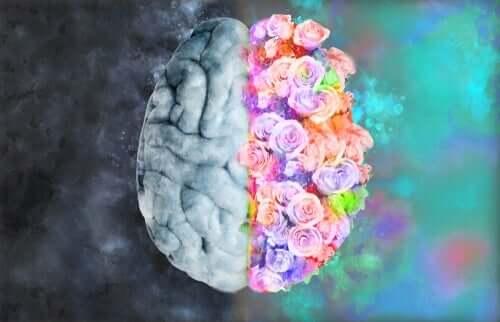 Neuroestetiikka: kun neurologia ja taide kohtaavat