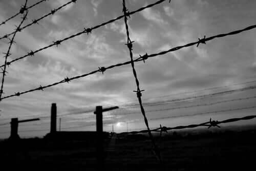Vaikka Chaim Ferster vietti nuoruutensa parhaat vuodet sodan kauhujen keskellä, eivät nuo kokemukset pilanneet hänen henkistä tasapainoaan