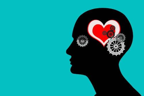 Tunteiden merkitys ja niiden suuri monimutkaisuus muodostavat kaiken, mitä teemme ja miten reagoimme ympäristön kanssa
