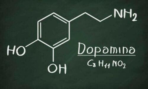 Dopamiini vaikuttaa muun muassa lihaksen liikkeeseen, kudosten kasvuun sekä immuunijärjestelmän toimintaan