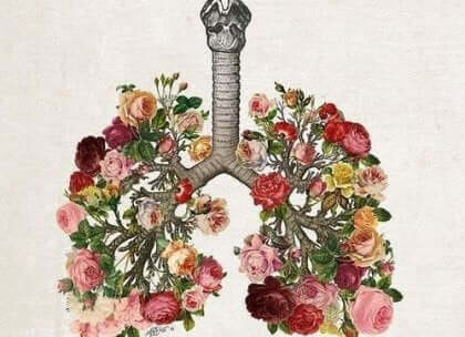 Kukkaiskeuhkot