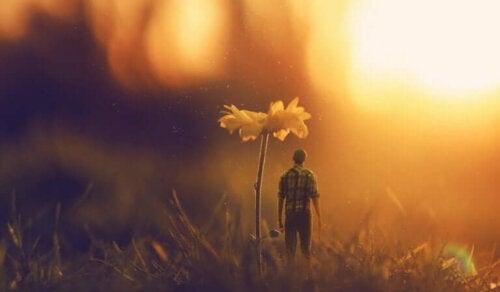 Onnellisuus ja onnen etsiminen ja löytäminen ovat usein keskeisiä aihepiirejä lausahduksissa, jotka muistuttavat meille, että elämä on kaunista