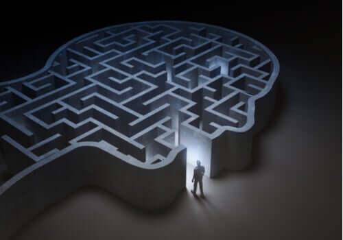 Objet petit a: Jacques Lacanin psykoanalyyttinen teoria