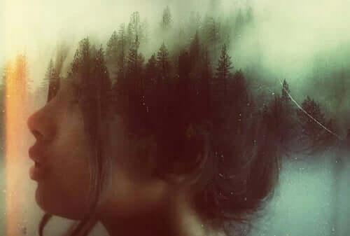 Mieli on metsä.