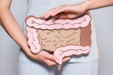 Henkinen ruoansulatus: avain suoliston ongelmiin