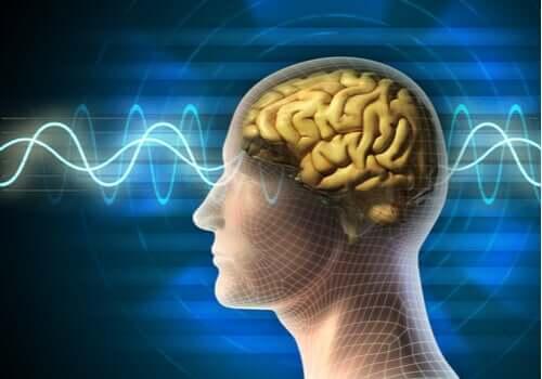 Elektrokonvulsiivisen hoidon käyttötarkoitukset
