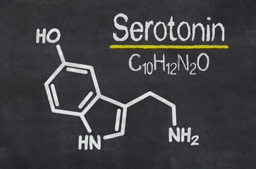 Serotoniinin toiminnan vaikutuksesta sitä voidaan kutsua sekä nautintohormoniksi että mielialahormoniksi