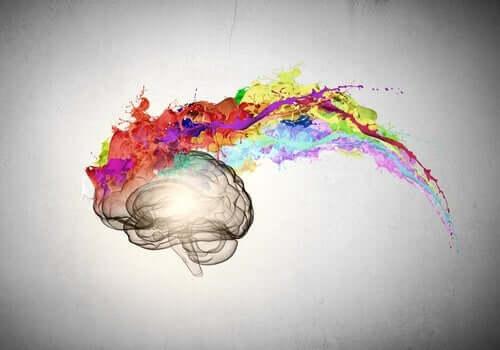 Aivoista lähtee väriä.