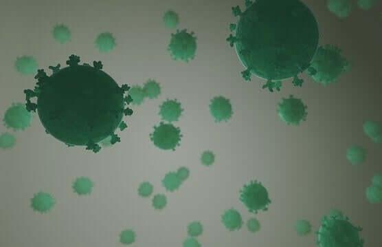Tiede on tutkinut, voivatko virukset kontrolloida käytöstämme