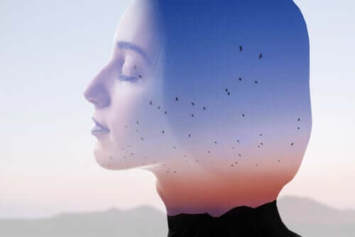 Yhdysvaltalainen psykiatri Karl Augustus Menninger on huomauttanut, että pelkoja voidaan kouluttaa