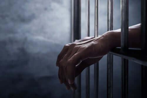 Takuujärjestelmän tarkoitus on pitää vähemmän ihmisiä vankiloissa.