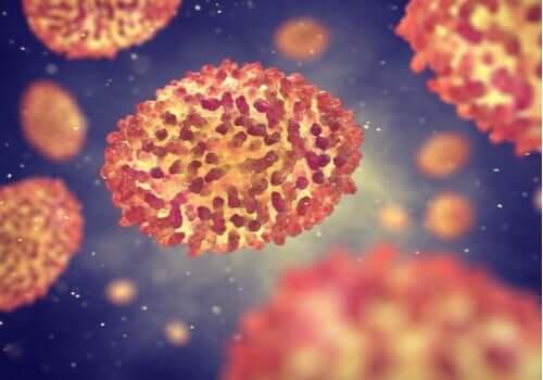 Virukset ovat älykkäitä mikro-organismeja
