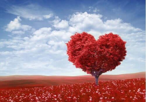 Pyhä Valentinus, rakkauden pyhimys