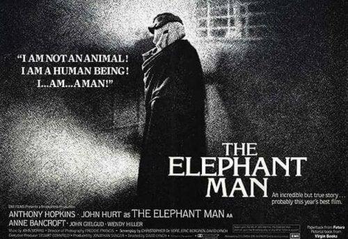 Vaikka Elefanttimies ei voittanut Oscar-ehdokkuuksista yhtään, historia on tehnyt siitä vuosien saatossa todellisen kulttiteoksen