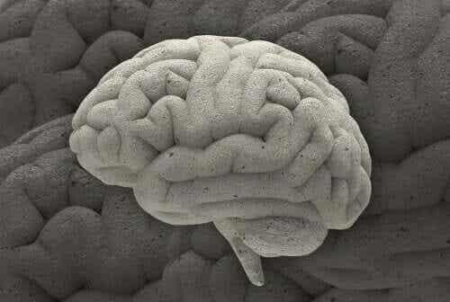 3 kiehtovaa neurotieteellistä tapausta