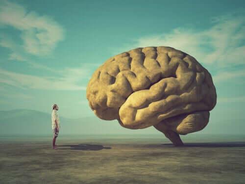 Mies katselee suuria aivoja aavikolla.