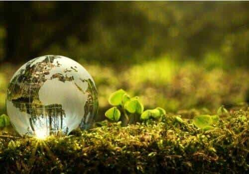 Ympäristön parantamisen tulee olla meidän kaikkien tavoite